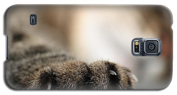 Paw Galaxy S5 Case