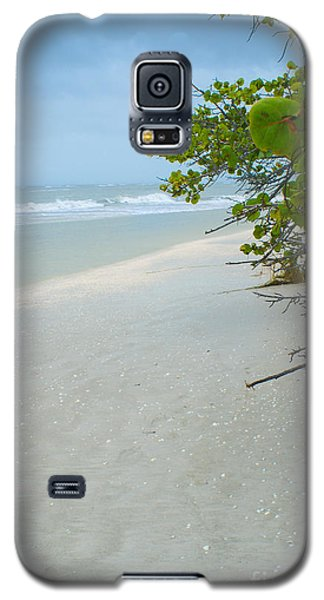 Peace And Quiet On Sanibel Island Galaxy S5 Case by Jennifer White