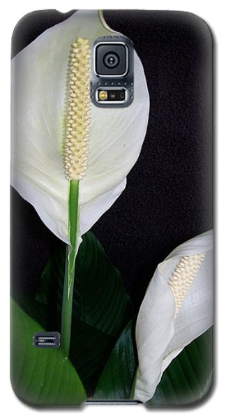 Peace Lilies Galaxy S5 Case