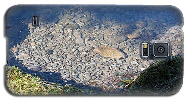 Peaceful Bay Galaxy S5 Case