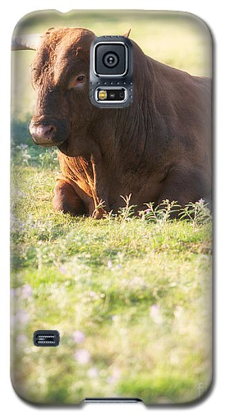 Galaxy S5 Case featuring the photograph Peaceful by Erika Weber