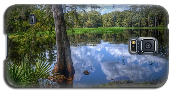Peaceful Florida Galaxy S5 Case by Timothy Lowry