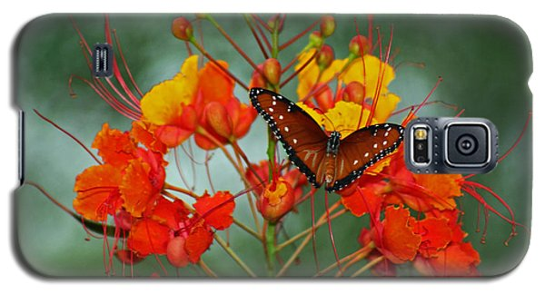 Galaxy S5 Case featuring the photograph Peaceful Moment by Elaine Malott