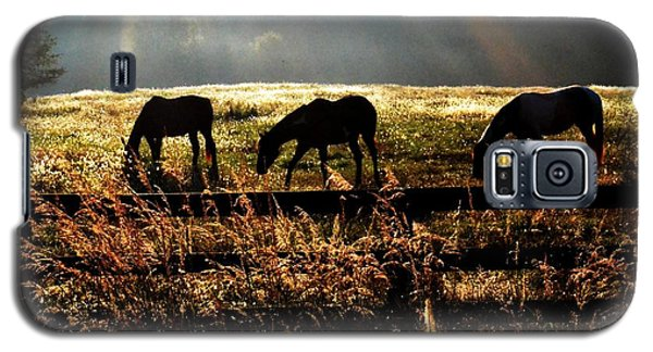Galaxy S5 Case featuring the photograph Peaceful Pasture by Carlee Ojeda