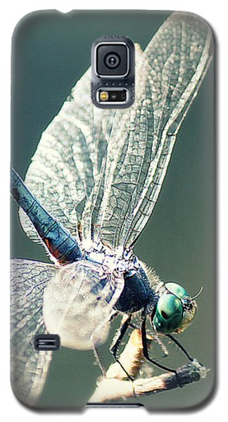 Peaceful Pause Galaxy S5 Case by Melanie Lankford Photography
