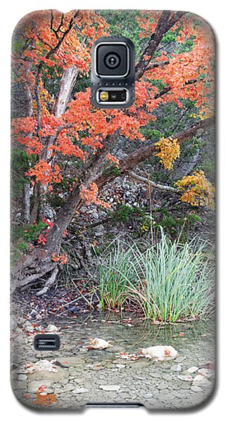 Peaceful Retreat Lost Maples Texas Hill Country Galaxy S5 Case