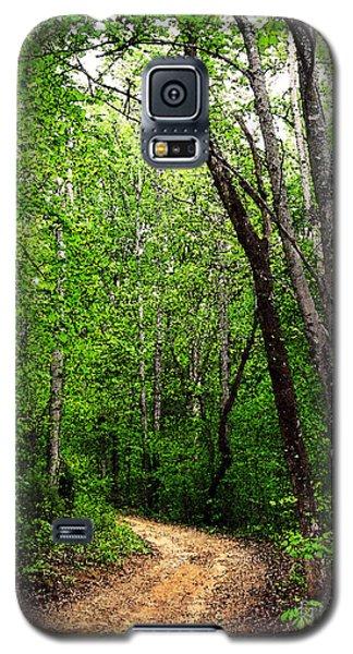 Peaceful Walk Galaxy S5 Case by Lydia Holly