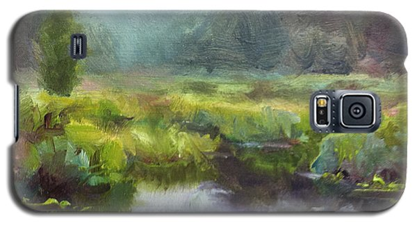 Peaceful Waters Impressionistic Landscape  Galaxy S5 Case