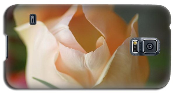 Galaxy S5 Case featuring the photograph Peach Harmony by Mary Lou Chmura