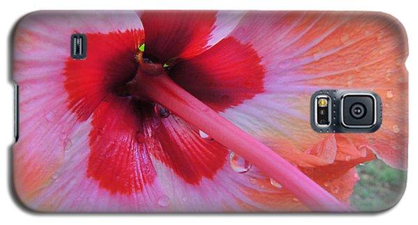 Peach Hibiscus Galaxy S5 Case by Kristine Merc