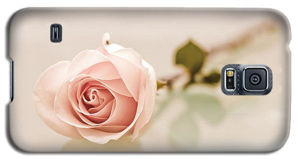 Peach Rose Galaxy S5 Case