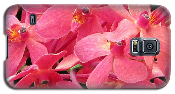 Galaxy S5 Case featuring the photograph Peaches And Cream by Debi Singer