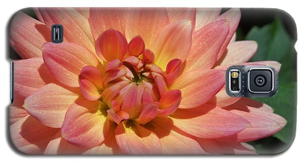 Peachy Dahlia Galaxy S5 Case