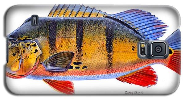 Catfish Galaxy S5 Case - Peacock Bass by Carey Chen