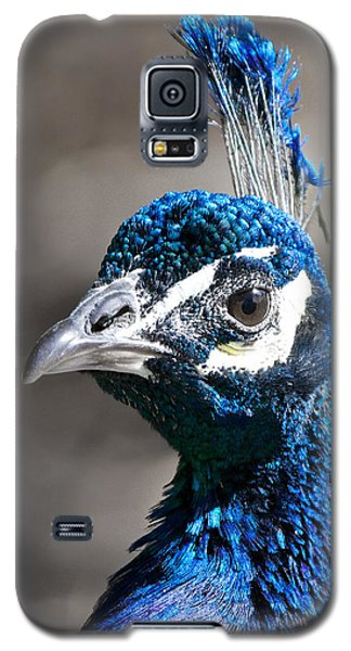 Galaxy S5 Case featuring the photograph Peacock Blue by Stephen  Johnson