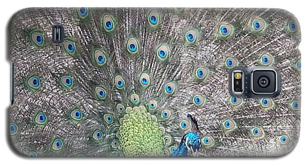 Galaxy S5 Case featuring the photograph Peacock Bow by Caryl J Bohn