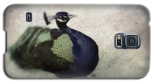 Galaxy S5 Case featuring the photograph Peacock by Bradley R Youngberg