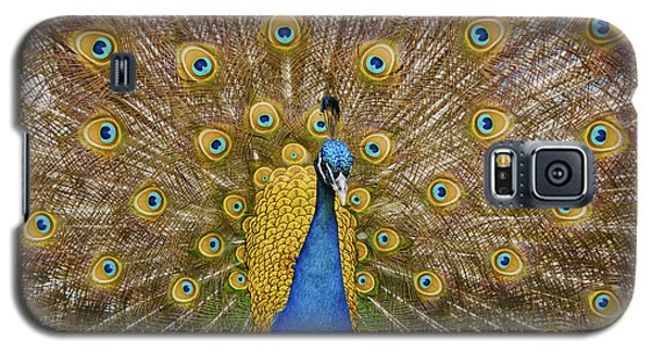 Peacock Courting Galaxy S5 Case