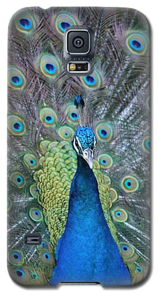 Galaxy S5 Case featuring the photograph Peacock by Elizabeth Budd