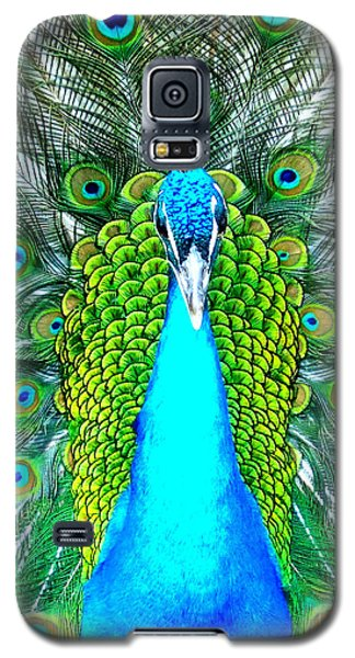 Galaxy S5 Case featuring the photograph Peacock Face On by Heidi Manly