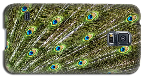 Peacock Feather Abstract Pattern Galaxy S5 Case by Darleen Stry