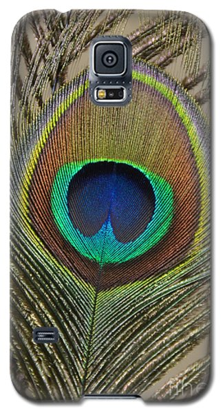 Peacock Feather Galaxy S5 Case by Debra Thompson