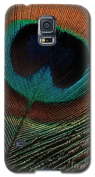 Galaxy S5 Case featuring the photograph Peacock Feather by Jerry Fornarotto