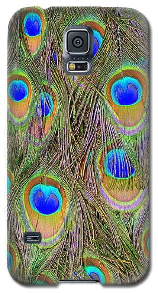 Peacock Feathers Galaxy S5 Case by Ramona Johnston