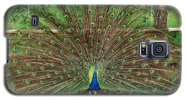 Galaxy S5 Case featuring the photograph Peacock Full Glory by Eva Kaufman