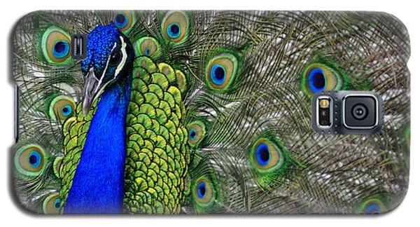 Peacock Head Galaxy S5 Case