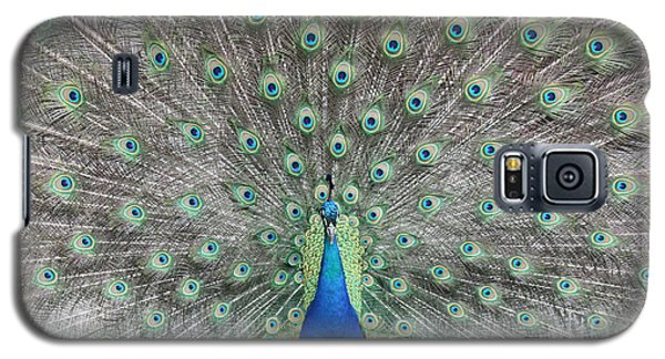 Galaxy S5 Case featuring the photograph Peacock by John Telfer