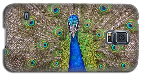 Peacock Galaxy S5 Case by Leigh Anne Meeks