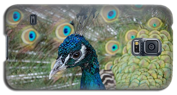Peacock Portrait Galaxy S5 Case