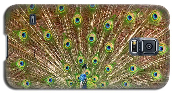 Galaxy S5 Case featuring the photograph Peacock Proud by Myrna Bradshaw