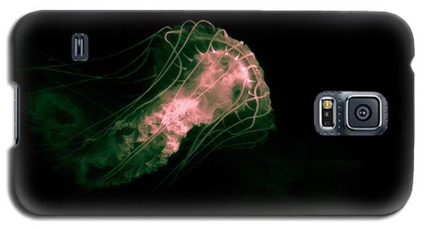 Peak A Boo Galaxy S5 Case