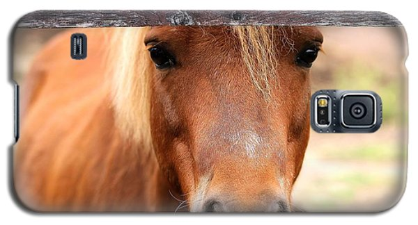Peaking Pony Galaxy S5 Case