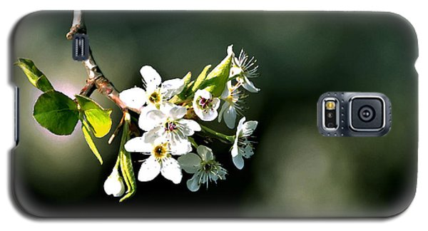 Pear Blossom Digital Galaxy S5 Case