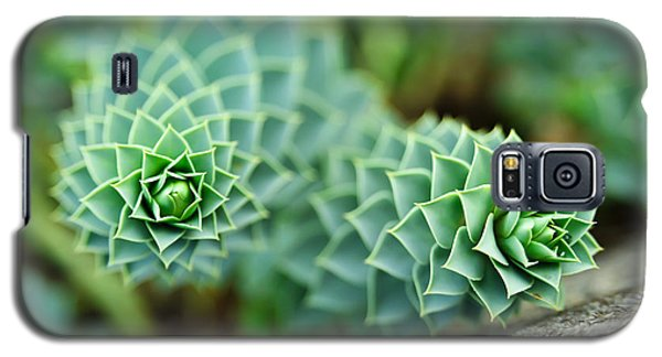 Pearly Succulents Galaxy S5 Case