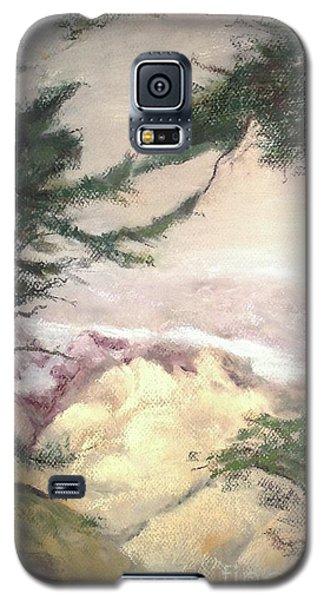 Pebble Beach Vista Galaxy S5 Case by Mary Lynne Powers
