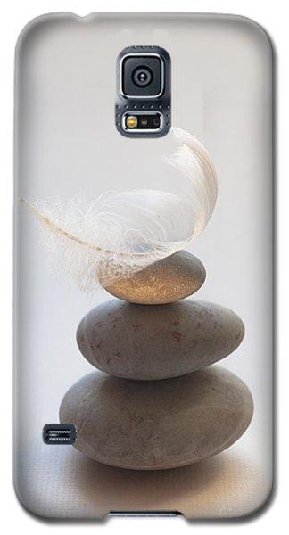 Pebble Pile Galaxy S5 Case by Jan Bickerton