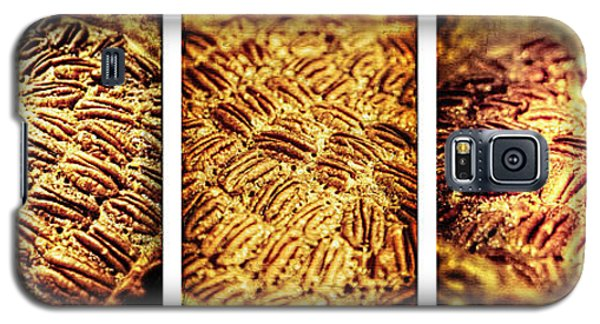 Pecan Pie Nostalgia Triptych By Lincoln Rogers Galaxy S5 Case