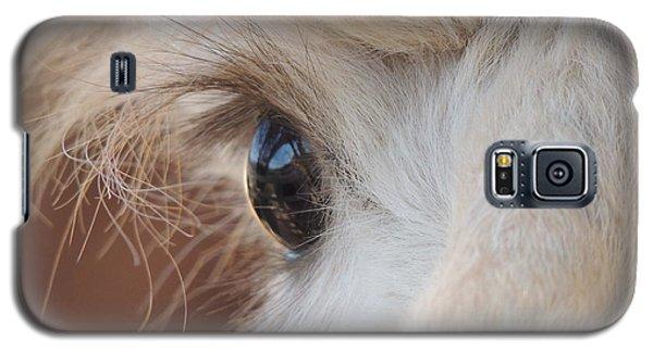 Peek A Boo Alpaca Galaxy S5 Case