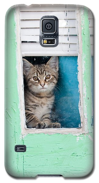 Galaxy S5 Case featuring the photograph Peek-a-boo by Jean Haynes
