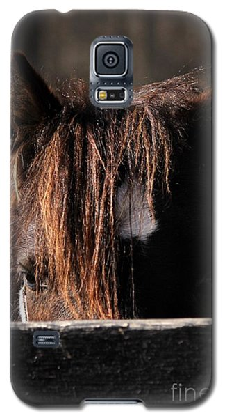 Peek-a-boo Pony Galaxy S5 Case