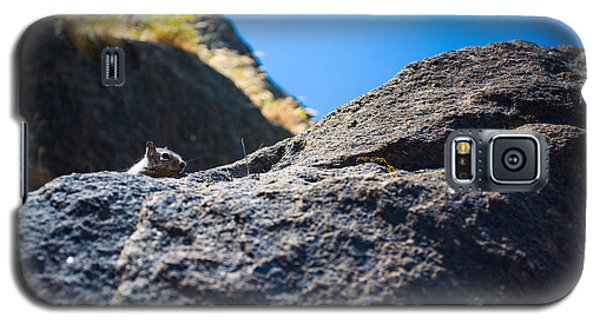 Galaxy S5 Case featuring the photograph Peekaboo by Mike Lee