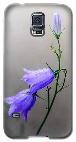 Blue Bells Peeking Through The Mist Galaxy S5 Case