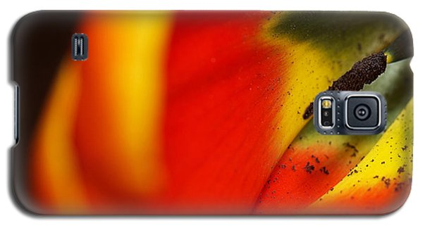 Galaxy S5 Case featuring the photograph Peering Into The Heart Of A Tulip by Lisa Knechtel
