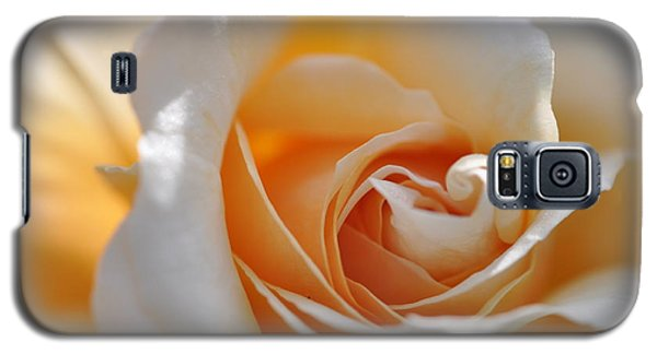 Galaxy S5 Case featuring the photograph Pegasus Rose  by Sabine Edrissi