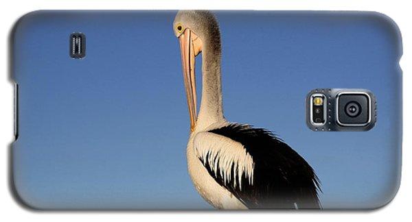 Pelican Alone Galaxy S5 Case