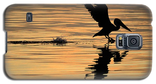 Pelican At Sunrise Galaxy S5 Case